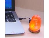 COMPUS - Salzleuchte mit USB für Computer&Laptop